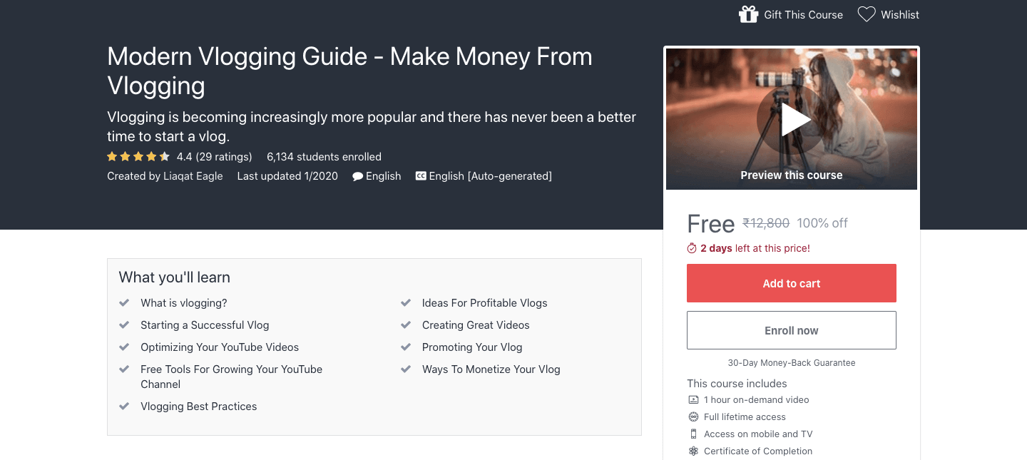 Modern Vlogging Guide - Make Money From Vlogging